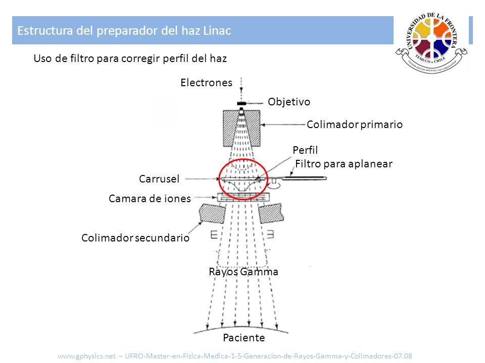 Estructura del preparador del haz Linac