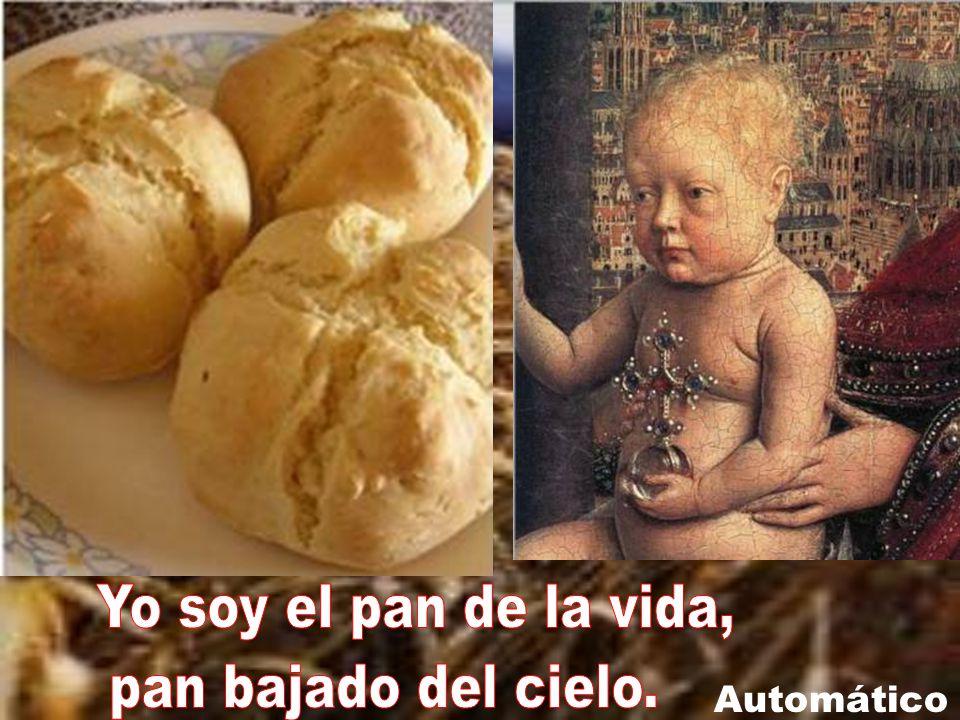 Yo soy el pan de la vida, pan bajado del cielo. Automático