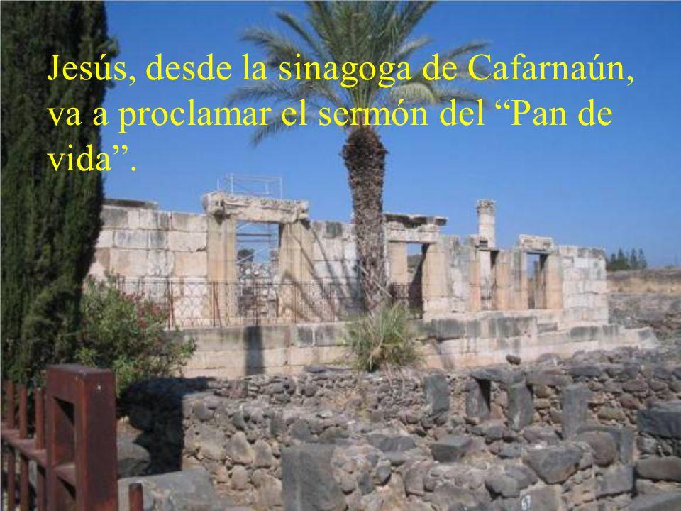 Jesús, desde la sinagoga de Cafarnaún, va a proclamar el sermón del Pan de vida .