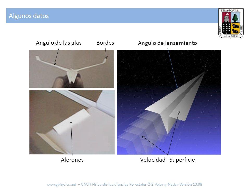 Algunos datos Angulo de las alas Bordes Angulo de lanzamiento Alerones