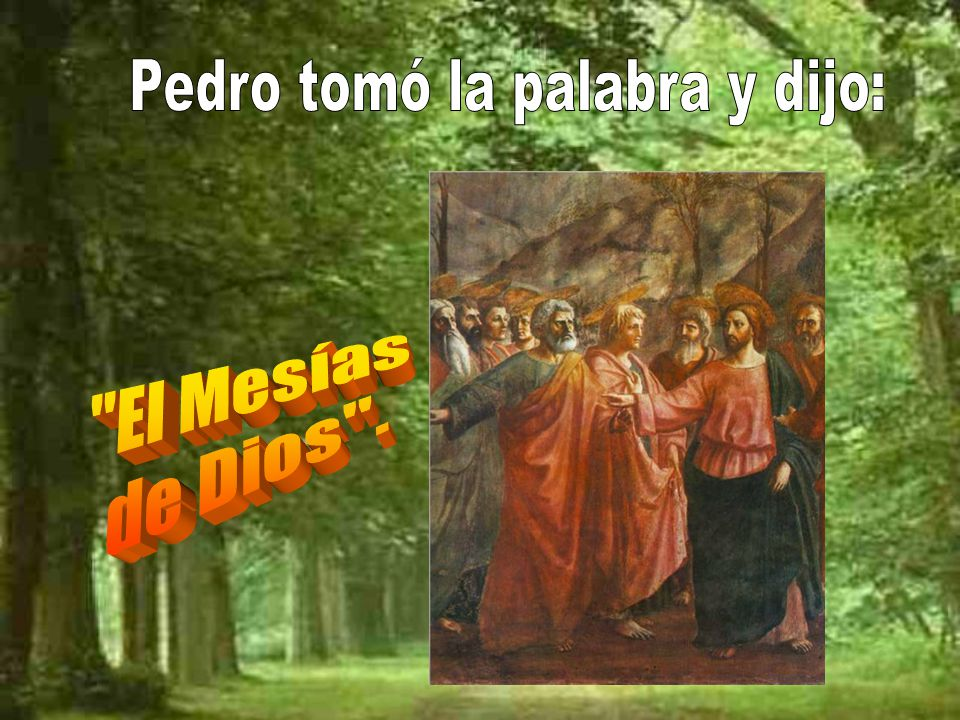 Pedro tomó la palabra y dijo: