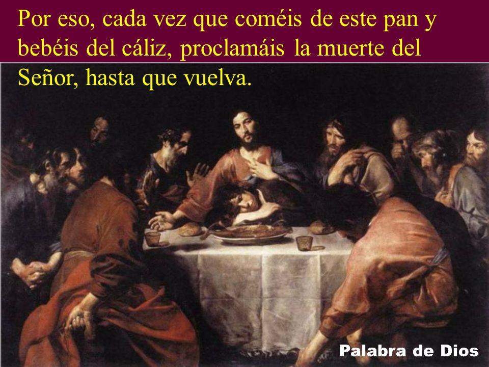 Por eso, cada vez que coméis de este pan y bebéis del cáliz, proclamáis la muerte del Señor, hasta que vuelva.
