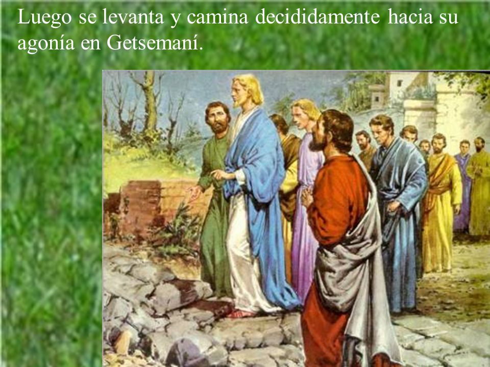 Luego se levanta y camina decididamente hacia su agonía en Getsemaní.