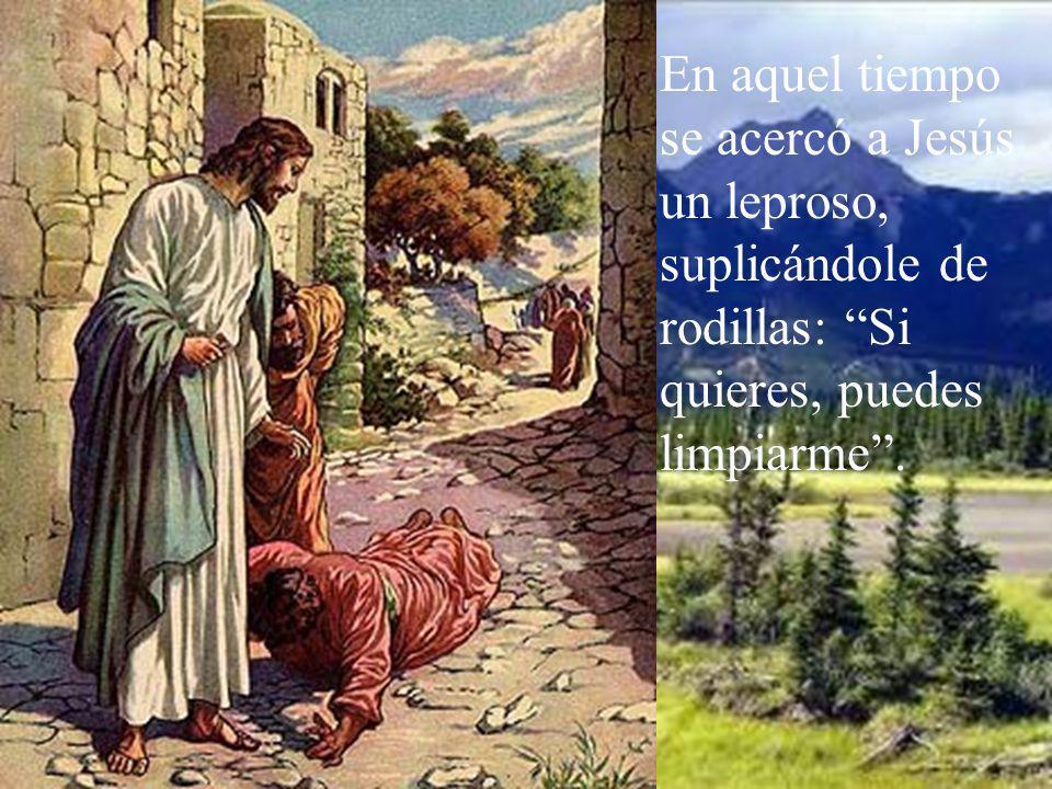 En aquel tiempo se acercó a Jesús un leproso, suplicándole de rodillas: Si quieres, puedes limpiarme .
