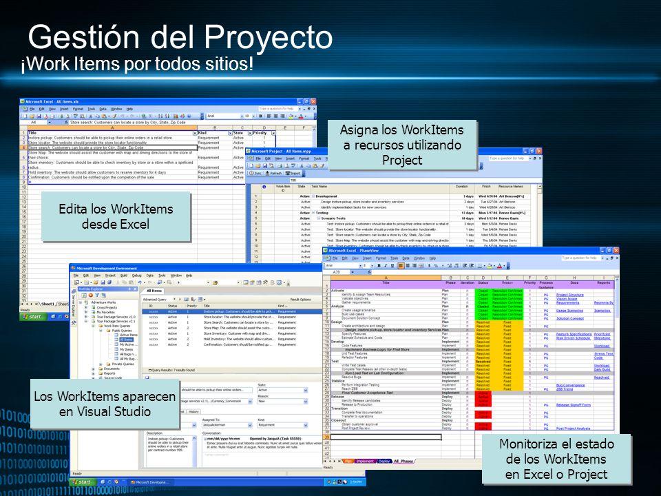 Gestión del Proyecto ¡Work Items por todos sitios!