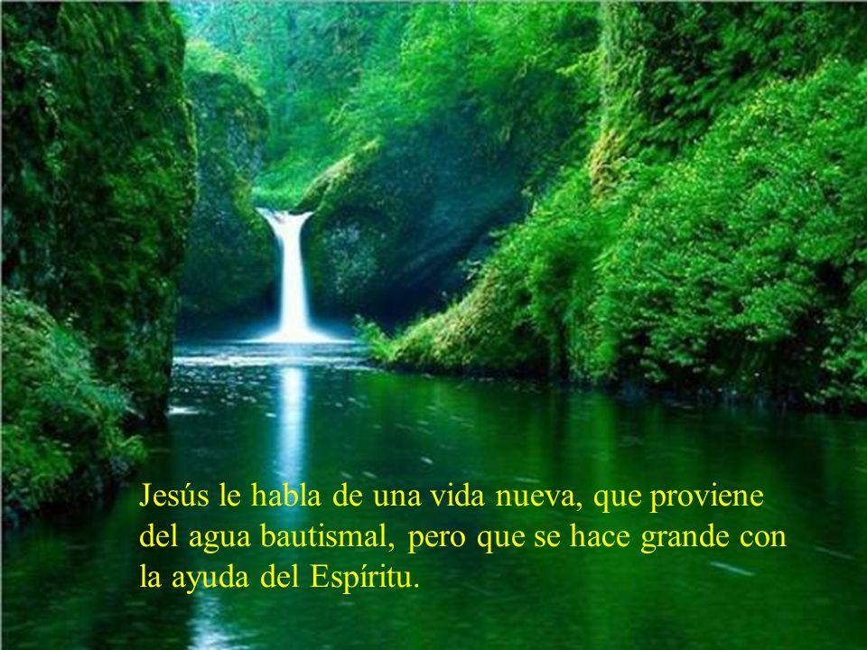 Jesús le habla de una vida nueva, que proviene del agua bautismal, pero que se hace grande con la ayuda del Espíritu.