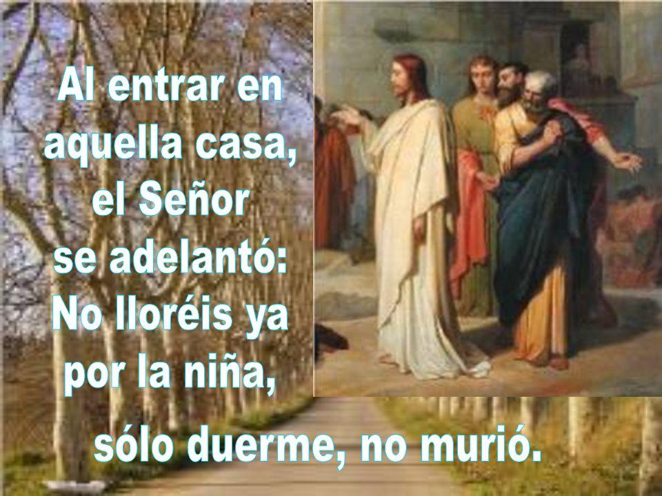 Al entrar en aquella casa, el Señor se adelantó: No lloréis ya por la niña, sólo duerme, no murió.