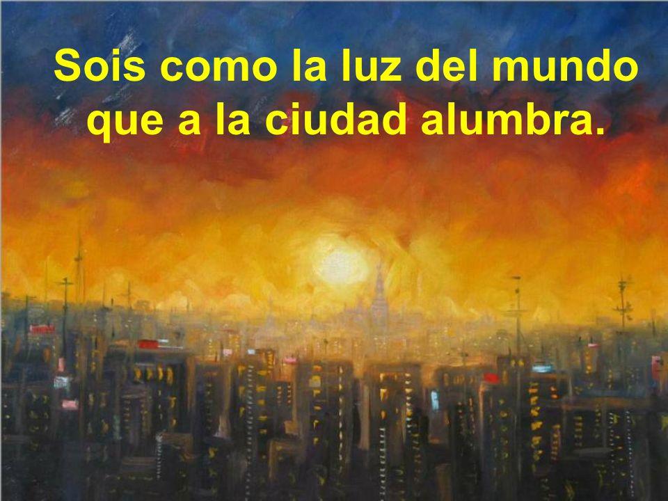 Sois como la luz del mundo que a la ciudad alumbra.