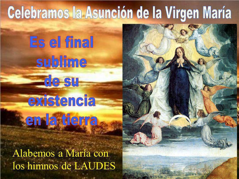 Celebramos la Asunción de la Virgen María