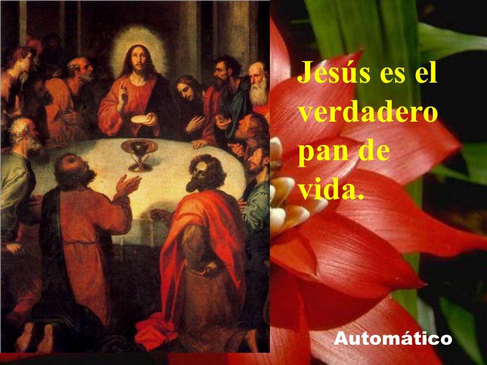 Jesús es el verdadero pan de vida.