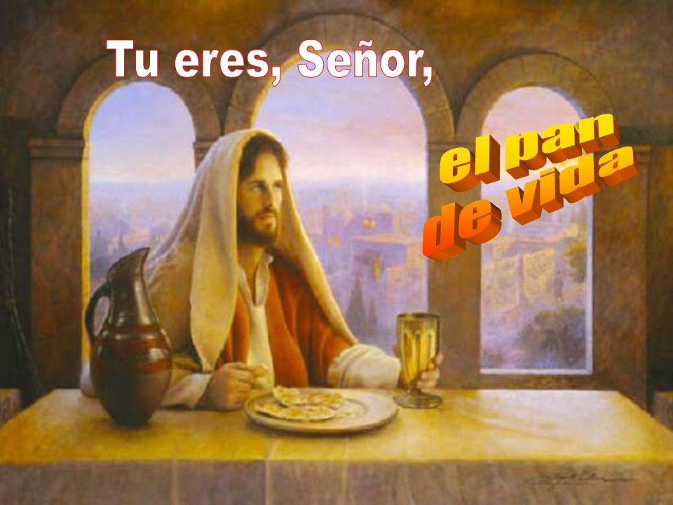 Tu eres, Señor, el pan de vida