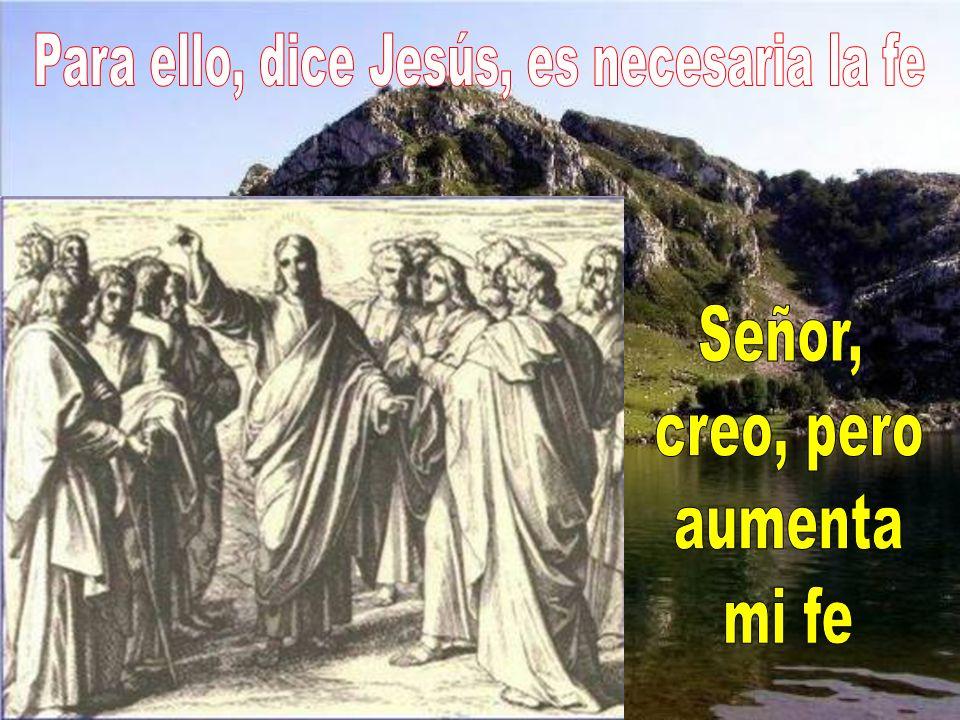 Para ello, dice Jesús, es necesaria la fe