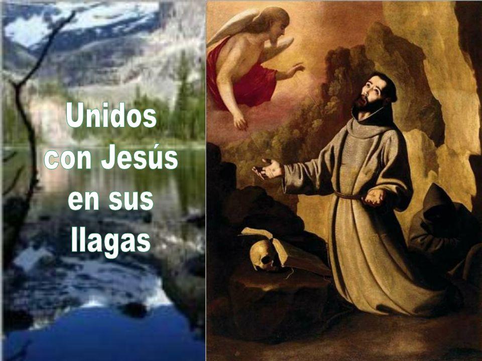 Unidos con Jesús en sus llagas