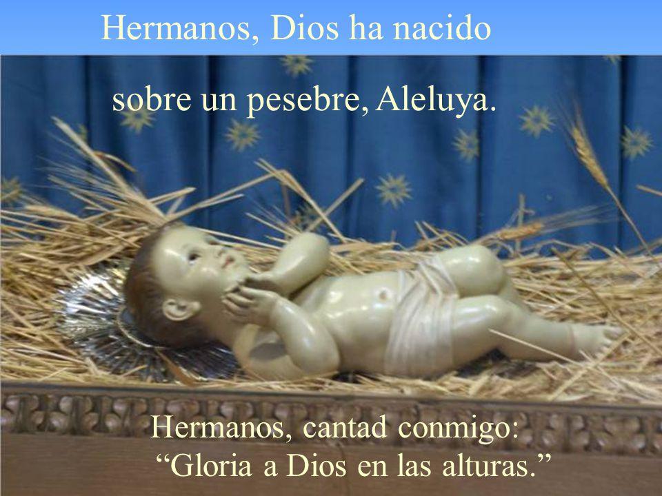 Hermanos, Dios ha nacido