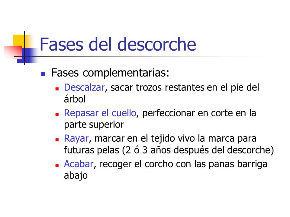 Fases del descorche Fases complementarias: