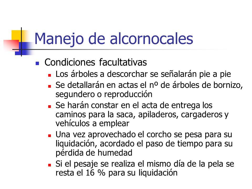 Manejo de alcornocales