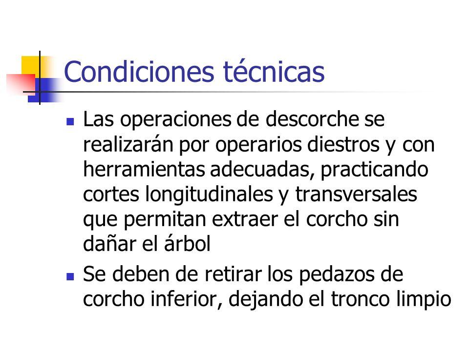 Condiciones técnicas