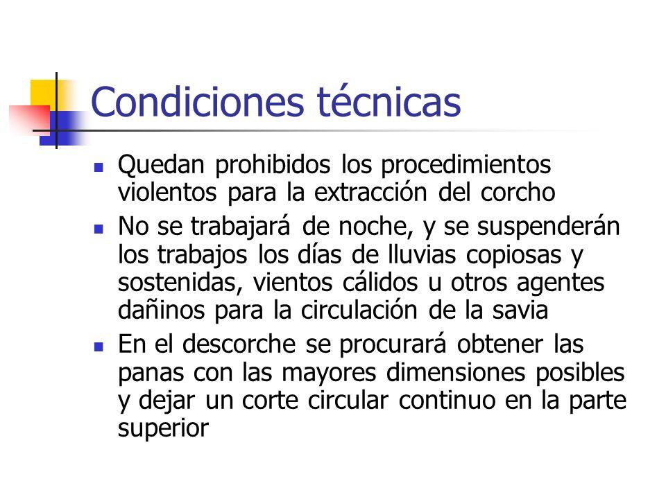 Condiciones técnicasQuedan prohibidos los procedimientos violentos para la extracción del corcho.