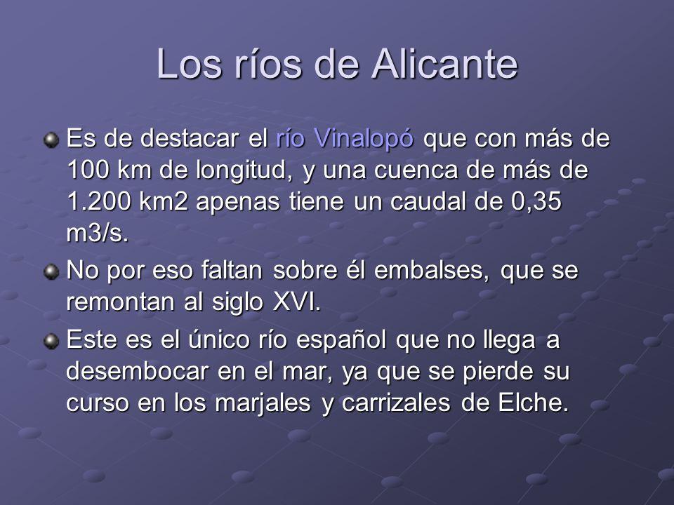 Los ríos de Alicante