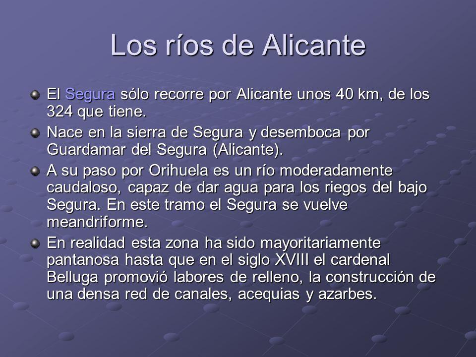 Los ríos de Alicante El Segura sólo recorre por Alicante unos 40 km, de los 324 que tiene.