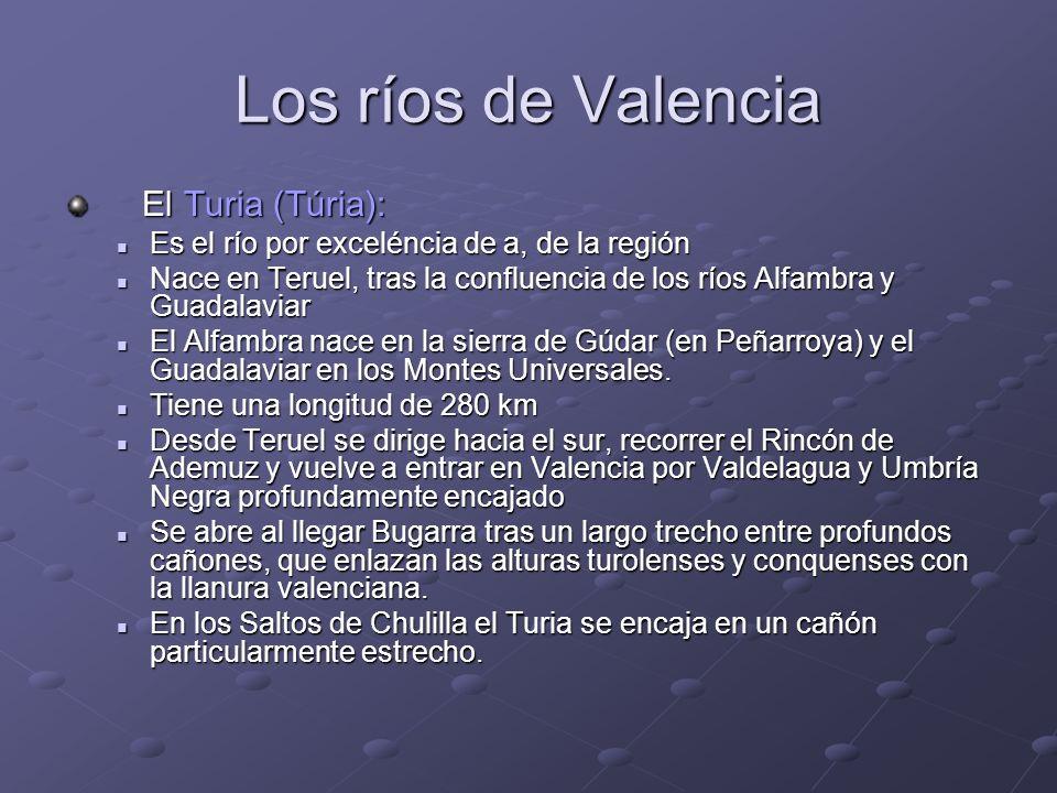 Los ríos de Valencia El Turia (Túria):