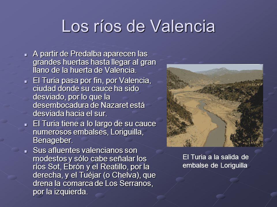 Los ríos de ValenciaA partir de Predalba aparecen las grandes huertas hasta llegar al gran llano de la huerta de Valencia.