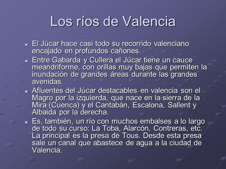Los ríos de ValenciaEl Júcar hace casi todo su recorrido valenciano encajado en profundos cañones.