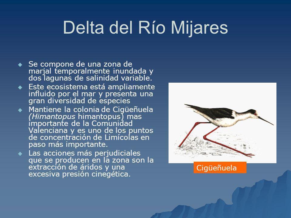 Delta del Río Mijares Se compone de una zona de marjal temporalmente inundada y dos lagunas de salinidad variable.