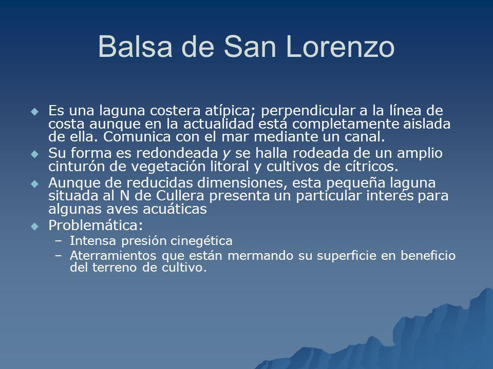 Balsa de San Lorenzo