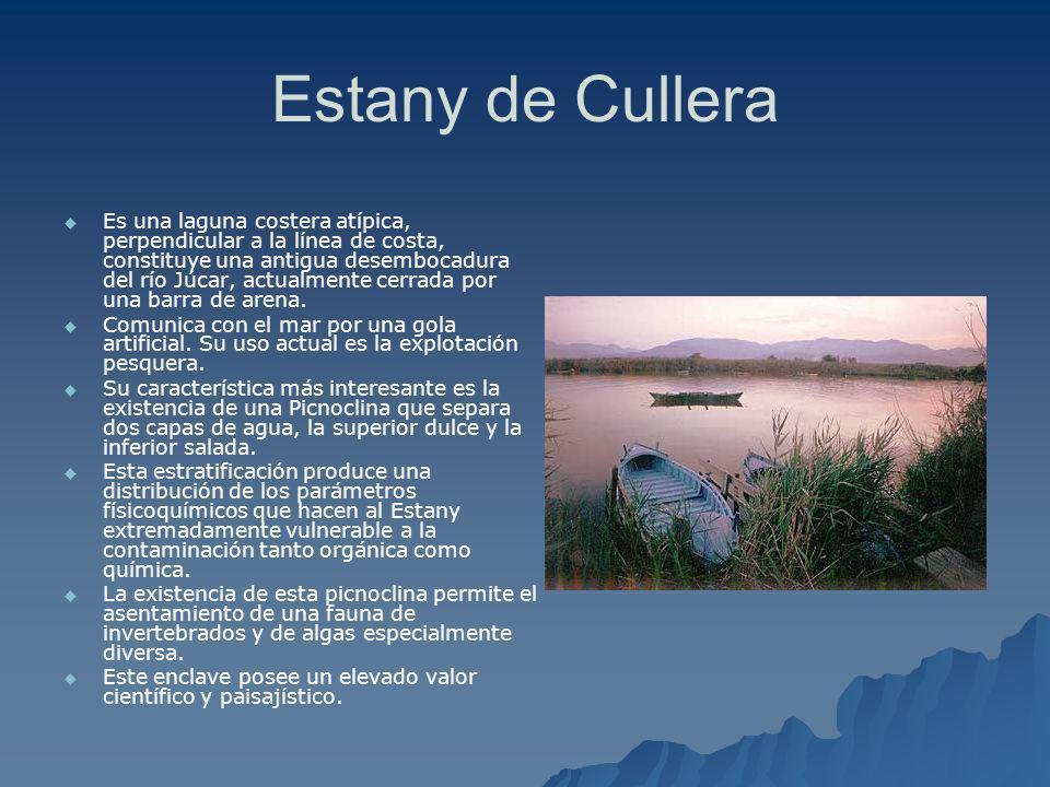 Estany de Cullera
