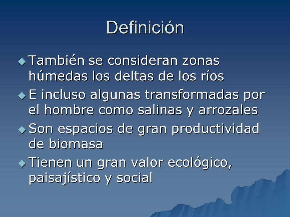 Definición También se consideran zonas húmedas los deltas de los ríos