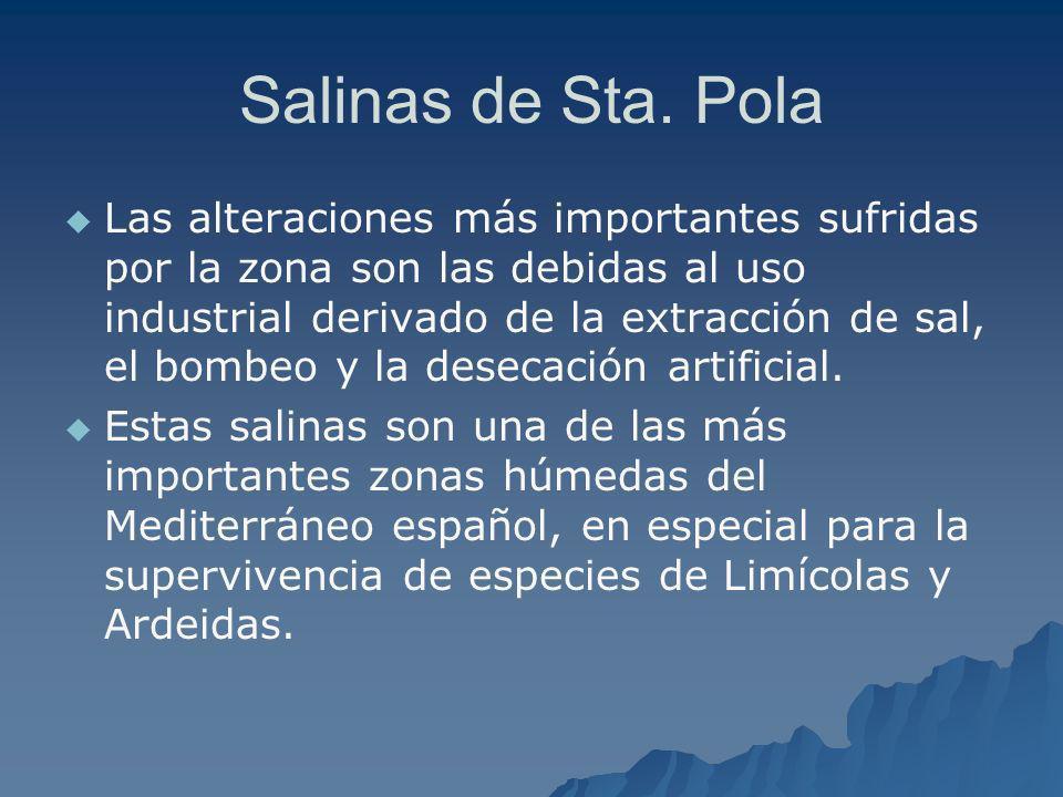 Salinas de Sta. Pola