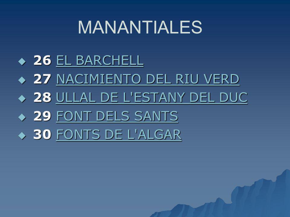 MANANTIALES 26 EL BARCHELL 27 NACIMIENTO DEL RIU VERD