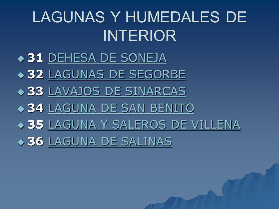 LAGUNAS Y HUMEDALES DE INTERIOR