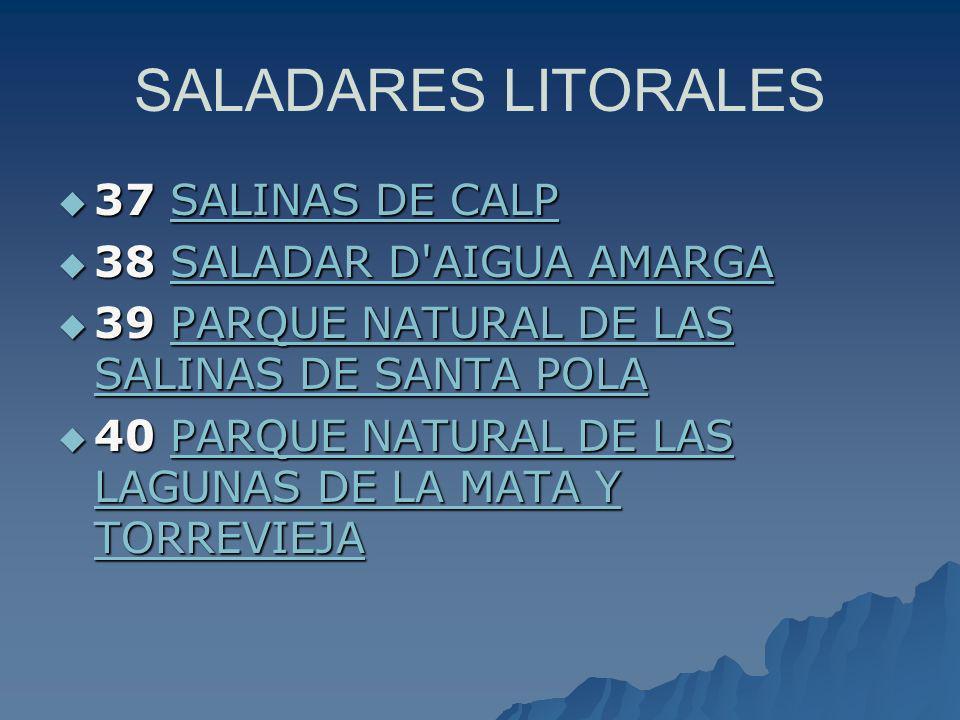 SALADARES LITORALES 37 SALINAS DE CALP 38 SALADAR D AIGUA AMARGA