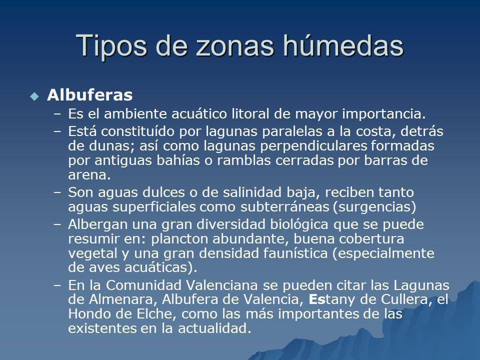 Tipos de zonas húmedas Albuferas