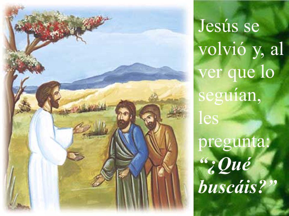 Jesús se volvió y, al ver que lo seguían, les pregunta: ¿Qué buscáis