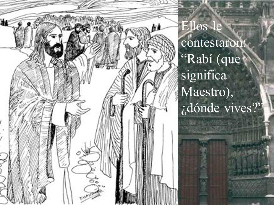 Ellos le contestaron: Rabí (que significa Maestro), ¿dónde vives
