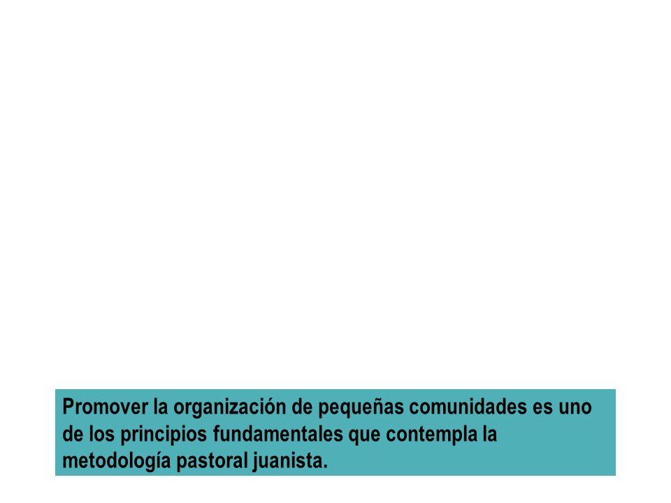 Promover la organización de pequeñas comunidades es uno de los principios fundamentales que contempla la metodología pastoral juanista.