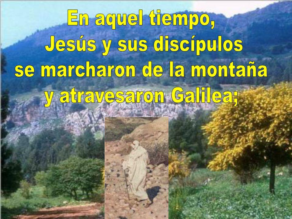se marcharon de la montaña y atravesaron Galilea;