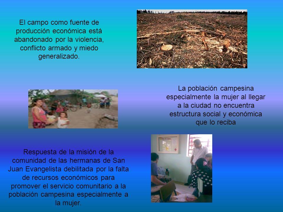 El campo como fuente de producción económica está abandonado por la violencia, conflicto armado y miedo generalizado.