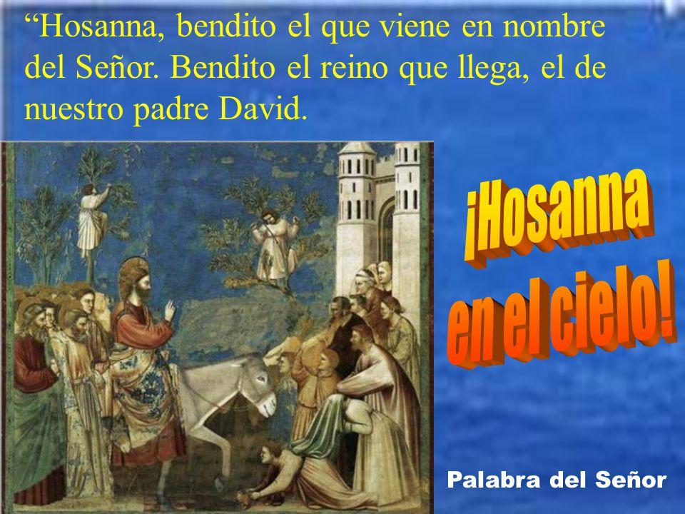 Hosanna, bendito el que viene en nombre del Señor