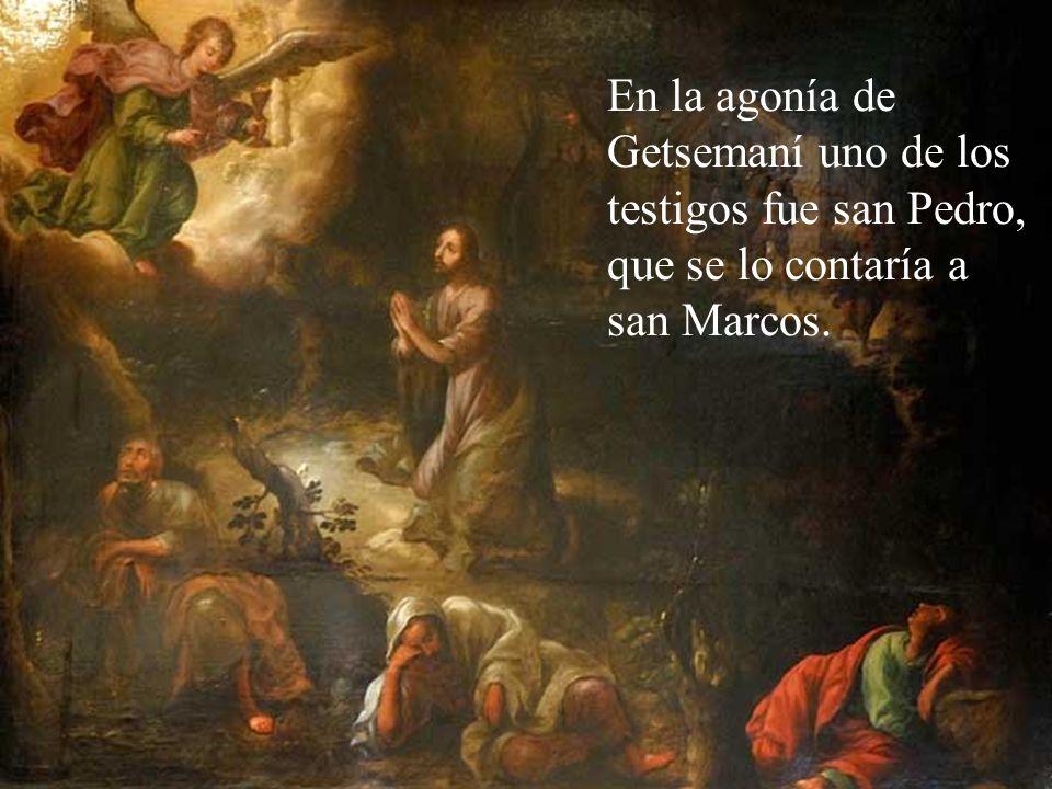 En la agonía de Getsemaní uno de los testigos fue san Pedro, que se lo contaría a san Marcos.