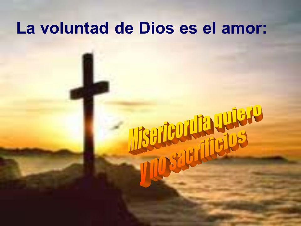 La voluntad de Dios es el amor: