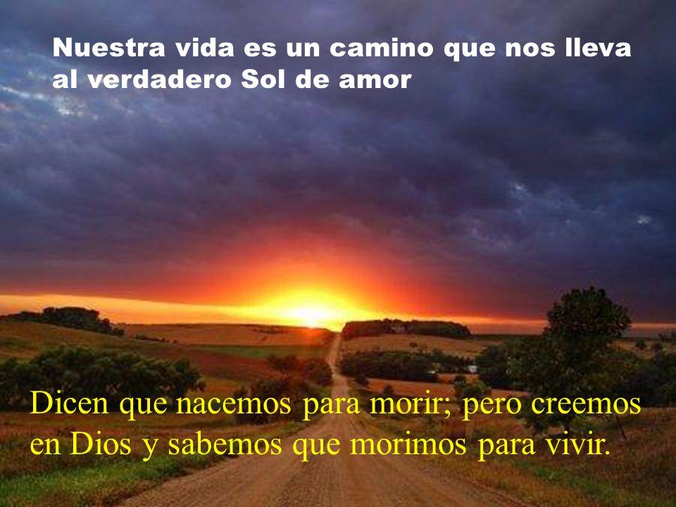 Nuestra vida es un camino que nos lleva al verdadero Sol de amor