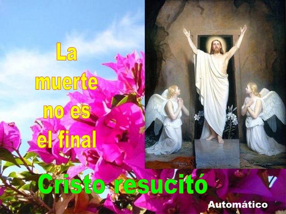 La muerte no es el final Cristo resucitó Automático
