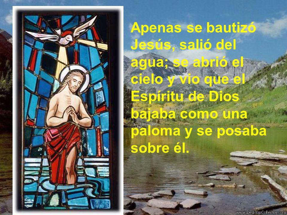 Apenas se bautizó Jesús, salió del agua; se abrió el cielo y vio que el Espíritu de Dios bajaba como una paloma y se posaba sobre él.