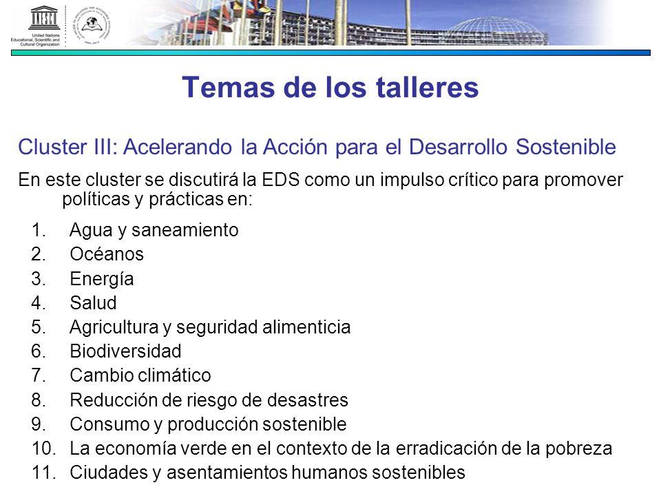 Temas de los talleres Cluster III: Acelerando la Acción para el Desarrollo Sostenible.