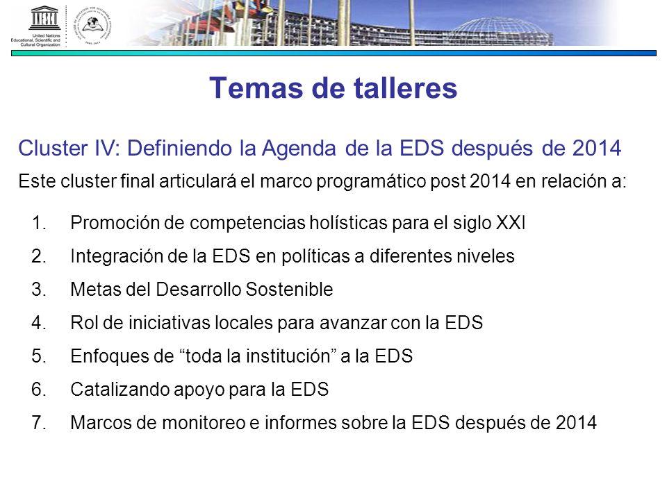 Temas de talleres Cluster IV: Definiendo la Agenda de la EDS después de 2014.