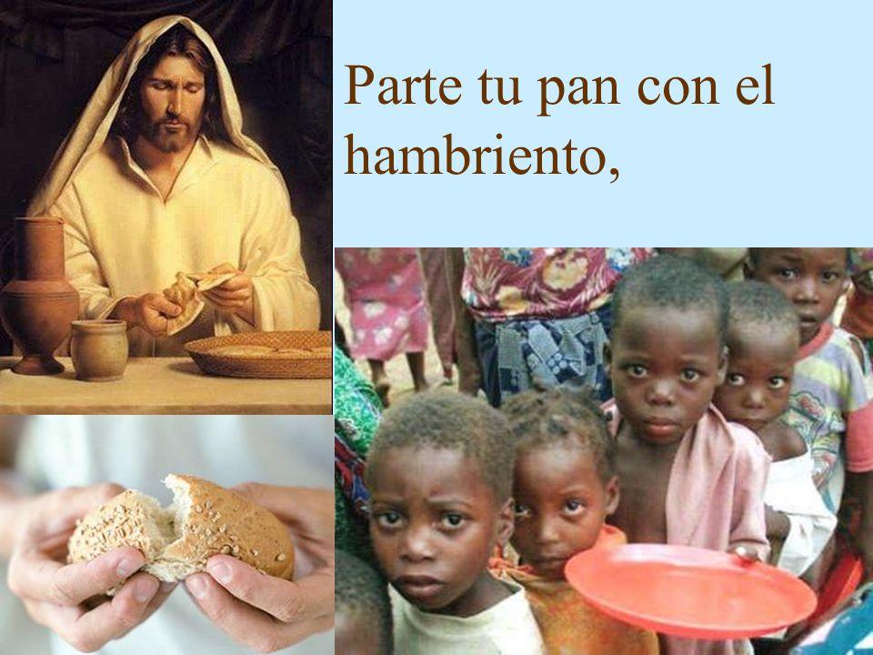 Parte tu pan con el hambriento,